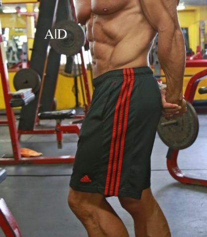 Best Workouts to Gain Muscle!!